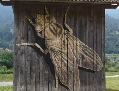 Stre(e)t Barch – Fly